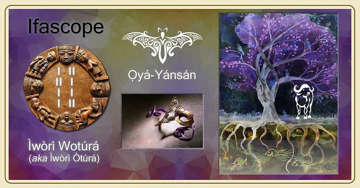 ifascope-tree-roots2.jpg