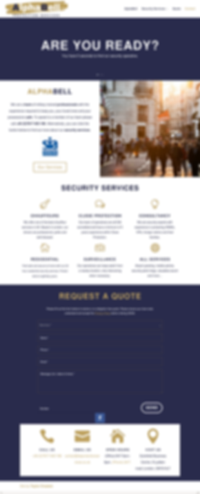 Website design and digital marketing.png