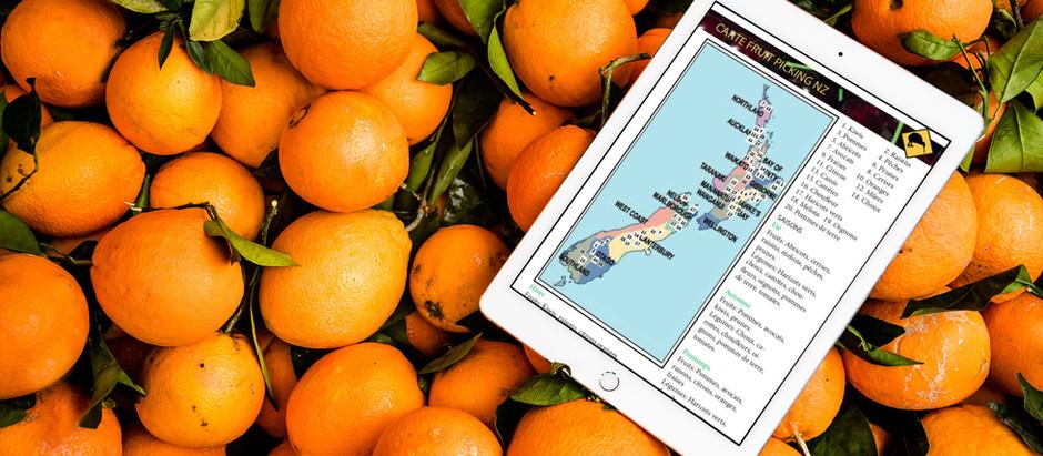 Le fruit picking en Nouvelle-Zélande: Fruits, légumes et saisons.