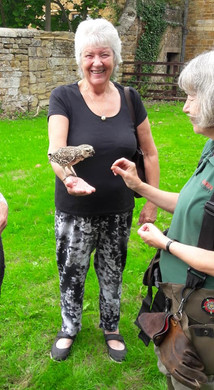 Maureen bird.jpg