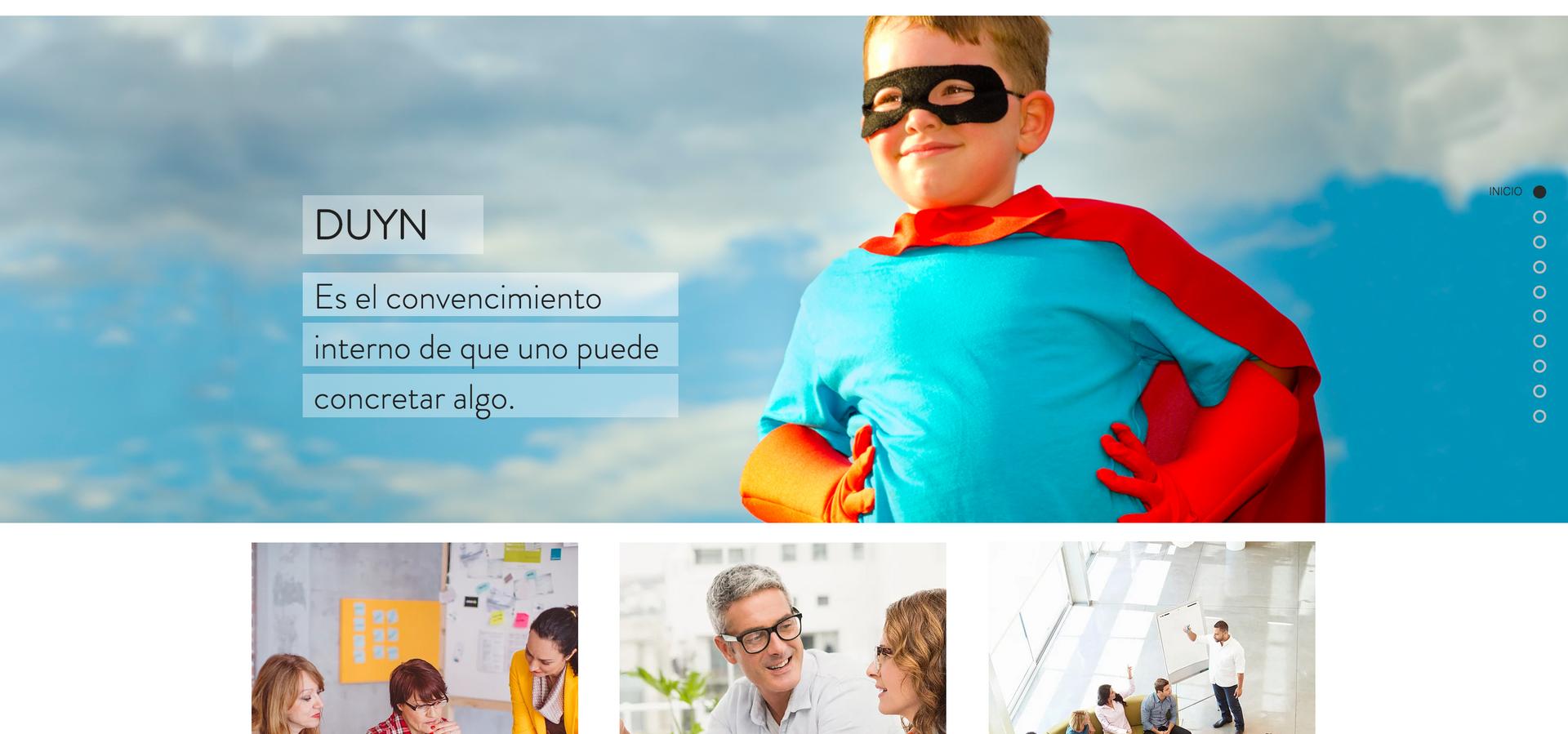 Duyn, Consultora - Web