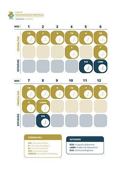 Calendario plan de seguimiento, clinica OCMI, bariatrica, operación, reganancia, bypass, gastrico