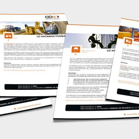 Brochure de servicios para carpeta institucional
