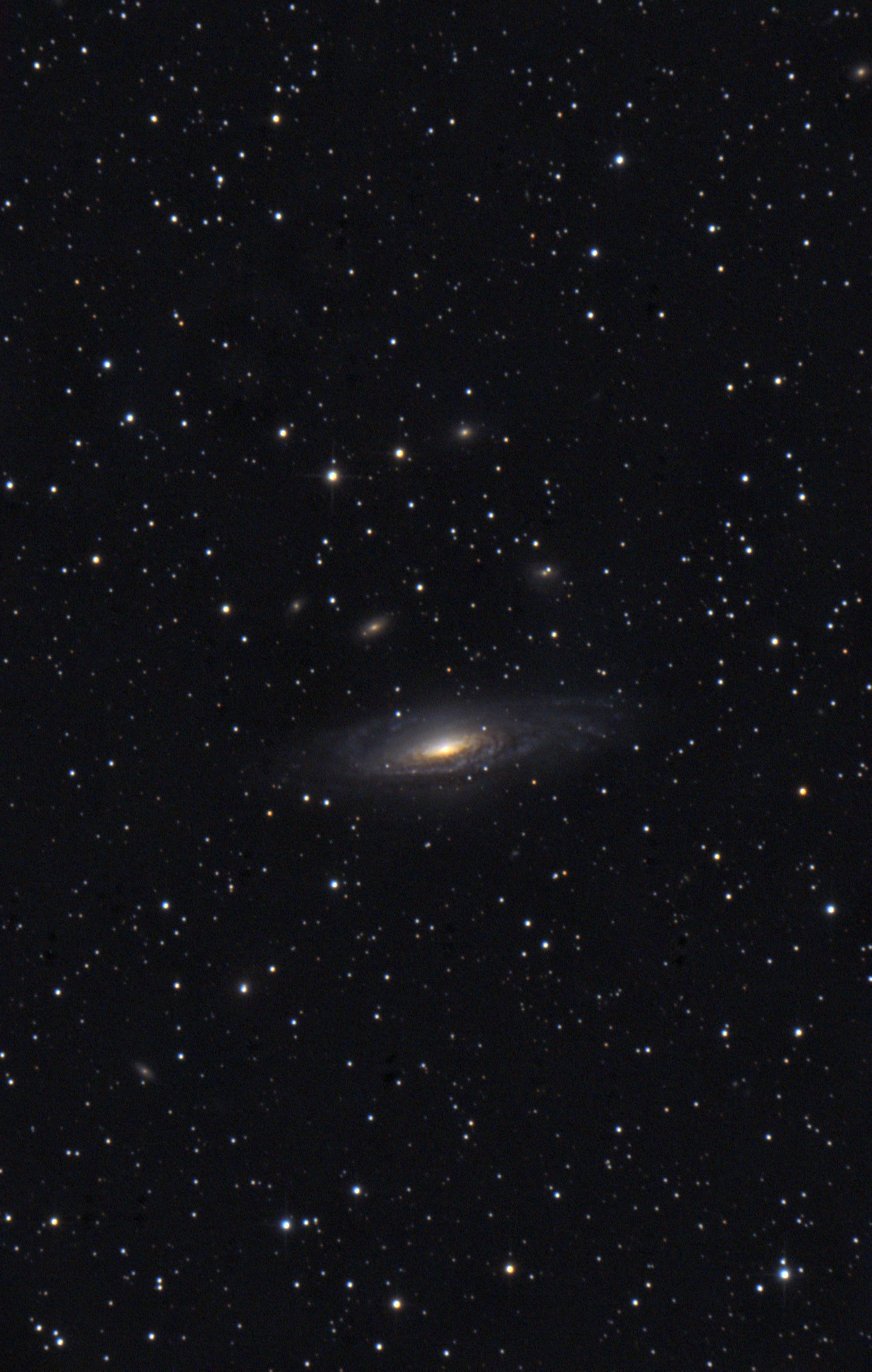 NGC7331