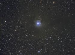 """NGC 7023 """"Iris Nebula"""""""