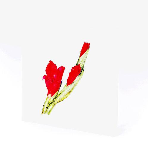 Karte Blumen rot