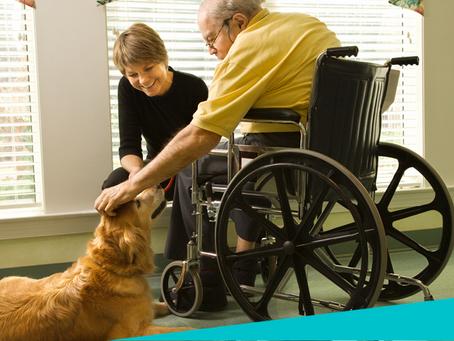 Los perros y las personas con discapacidad. By Tibiboo-Préstame tu perro.