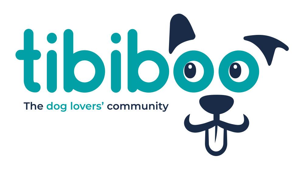 Tibiboo-Logo-1