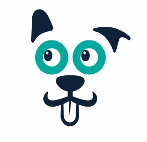 icone app