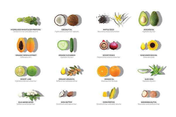 ELEVEN-INGREDIENTS-ABOUT-US-PAGE-IMAGE-1