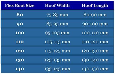 Flex Boots USA Size chart mm.PNG