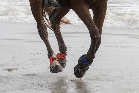 Flex on the beach!
