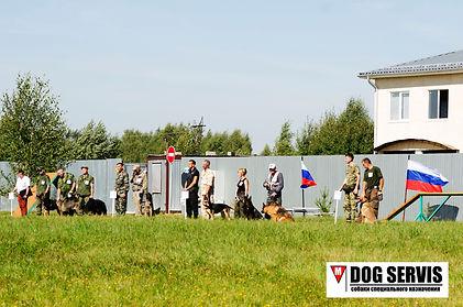 кинологическая служба, кинолог, собаки по поиску взрывчатых веществ, служебная собака