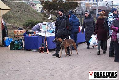 Дог сервис, Dog servis, кинологический центр, подготовка служебных собак