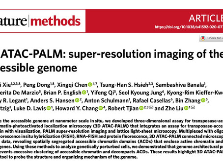 Great Collaboration with James Liu Group @ Janelia Farm, HHMI.  Published in Nature Methods.