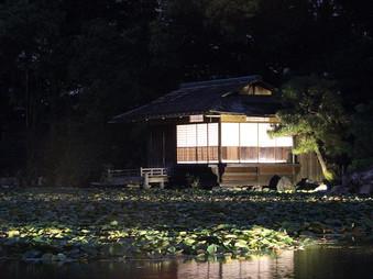 Illuminations au Shousei-en (Kikokutei)