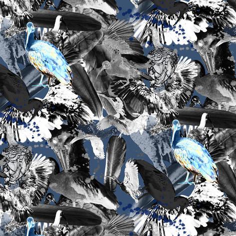 Pesky Birds