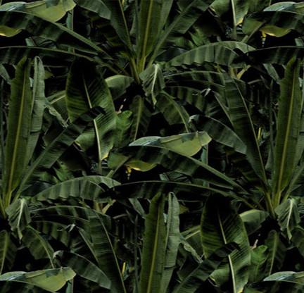 Emerald Banana