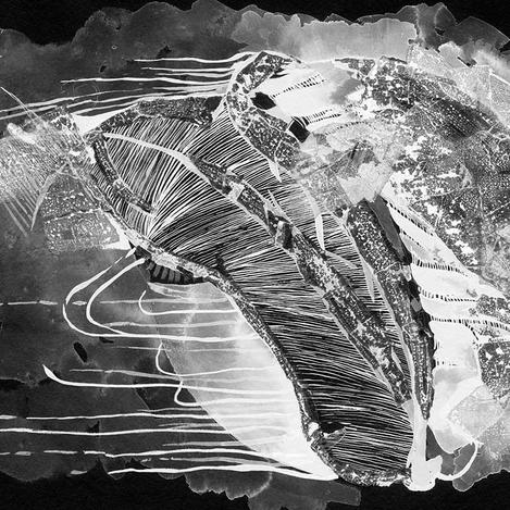 Title: Jellyfish Planet by Caitlin Mkhasibe