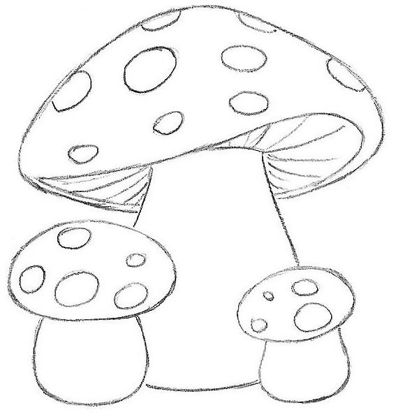 8-how-to-draw-mushrooms-for-kids.jpg