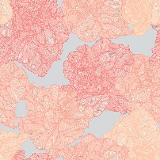Hibiscus-Charm_Tropical_by-Patricia-Brau