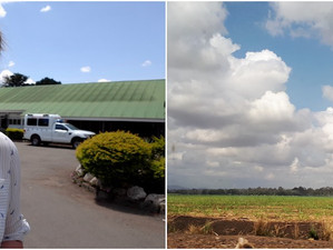 Progress in Antenatal Care in Tanzania