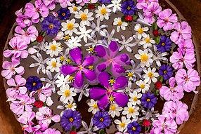 flower-mandala-closeup-whole-1-1000x668.