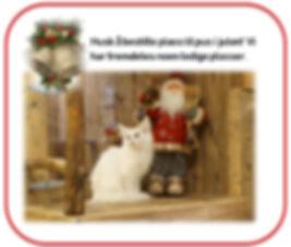 Bestille plass jul.JPG