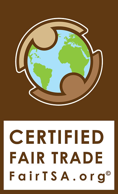 FairTSA Logo C.jpg