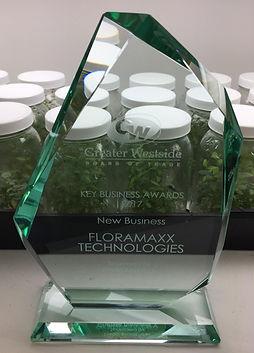 Key Awards 207 New Business
