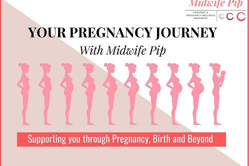 Your Pregnancy Journey Test