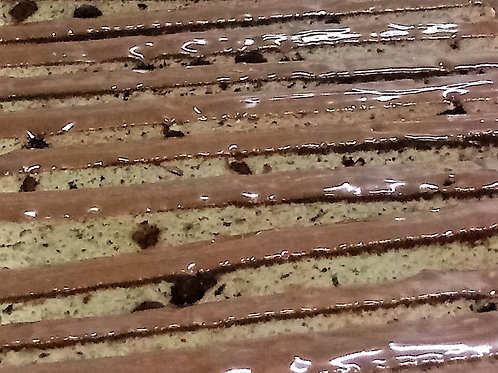Espresso Chocolate Chip Biscotti