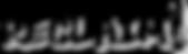 Reclaim logo - transparent.png