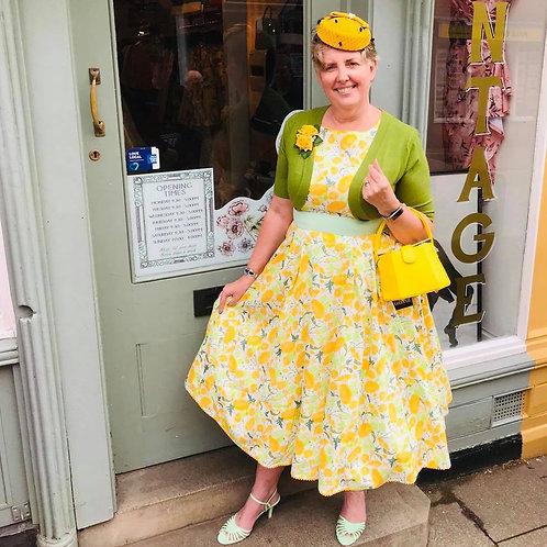Buttercup betty Swing Dress