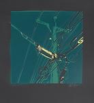 Braeden Raymer Logo PROFILE PICTURE-01.p