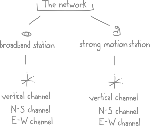 Diagram showing 2 different station types (broadband and strong motion) and the 3 types of channels for each station (vertical, N-S, and E-W)