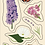 Thumbnail: Backyard Flower Shop Sticker Sheet