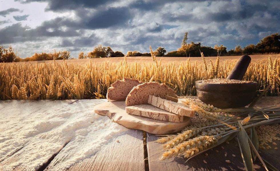 grain flour.jpg