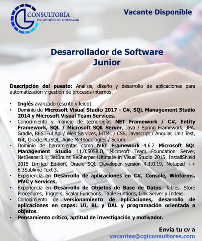 Desarrollador de Software Junior .jpg