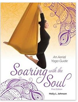 aerial yoga teacher training costa rica