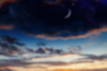 Hali Love New Moon New You Online Progra