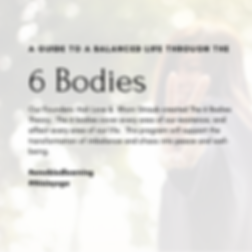 THE 6 BODIES - A GUIDE TO A BALANCED LIF