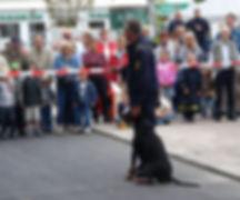 Ascomannis Hassan, PH Kåring, PH-P (Police Service Dog) & Jes
