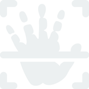 icons8-palm-scan-208 (2).png