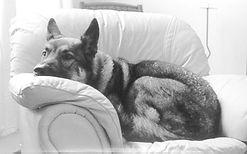 cherokee_couch.jpg