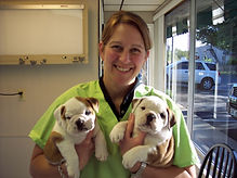 doc and bulldog pups full.jpg