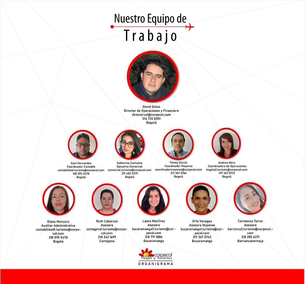 NUESTRO EQUIPO DE TRABAJO - ORGANIGRAMA.