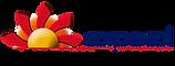logo Viajes y turismo.png