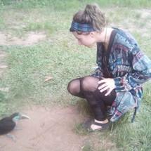 Baby Toucan - Tucan Bebe