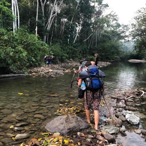 Exploring the Amazon - Explorando